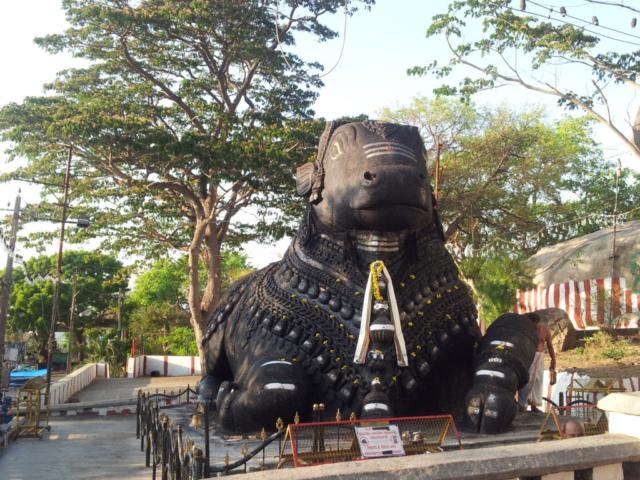 Nandi Bull statue